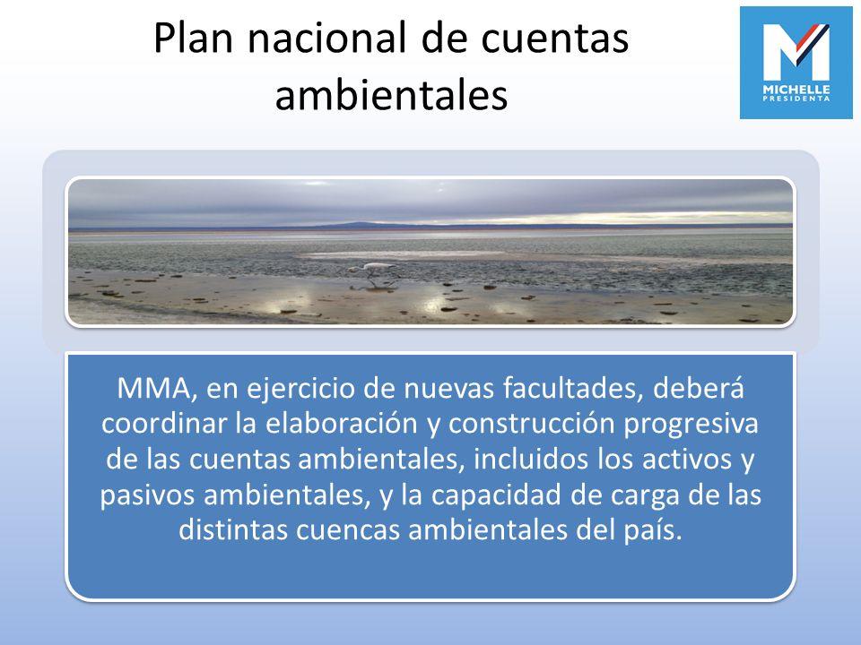 Plan nacional de cuentas ambientales MMA, en ejercicio de nuevas facultades, deberá coordinar la elaboración y construcción progresiva de las cuentas
