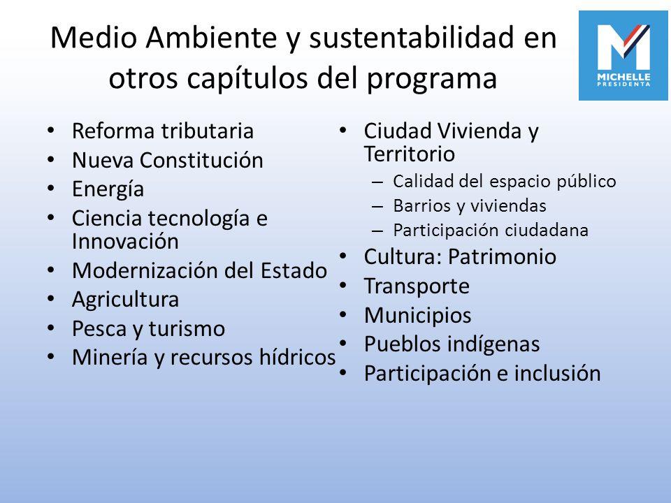 Medio Ambiente y sustentabilidad en otros capítulos del programa Reforma tributaria Nueva Constitución Energía Ciencia tecnología e Innovación Moderni