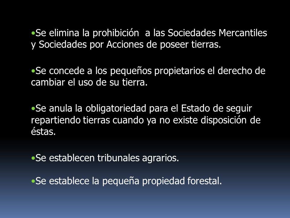 Se elimina la prohibición a las Sociedades Mercantiles y Sociedades por Acciones de poseer tierras. Se concede a los pequeños propietarios el derecho