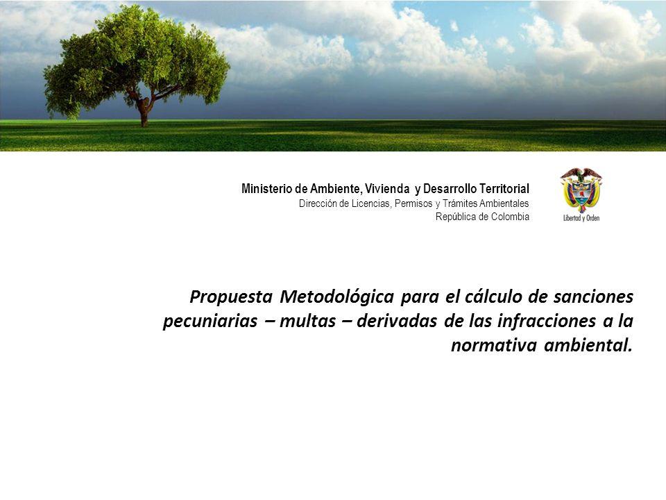 Ministerio de Ambiente, Vivienda y Desarrollo Territorial Direcci ó n de Licencias, Permisos y Tr á mites Ambientales Rep ú blica de Colombia Estimación de la afectación ambiental