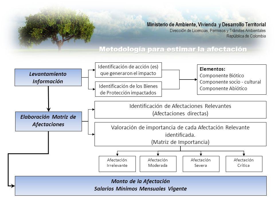 Ministerio de Ambiente, Vivienda y Desarrollo Territorial Direcci ó n de Licencias, Permisos y Tr á mites Ambientales Rep ú blica de Colombia Metodología para estimar la afectación Levantamiento Información Identificación de acción (es) que generaron el impacto Identificación de los Bienes de Protección impactados Elementos: Componente Biótico Componente socio - cultural Componente Abiótico Elaboración Matriz de Afectaciones Identificación de Afectaciones Relevantes (Afectaciones directas) Valoración de importancia de cada Afectación Relevante identificada.