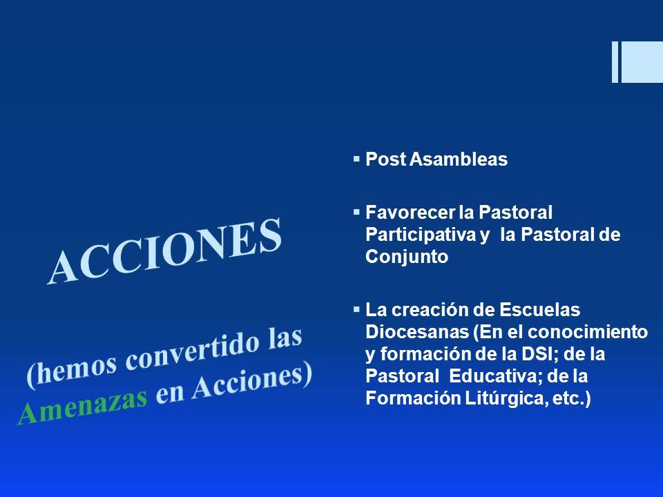 Post Asambleas Favorecer la Pastoral Participativa y la Pastoral de Conjunto La creación de Escuelas Diocesanas (En el conocimiento y formación de la
