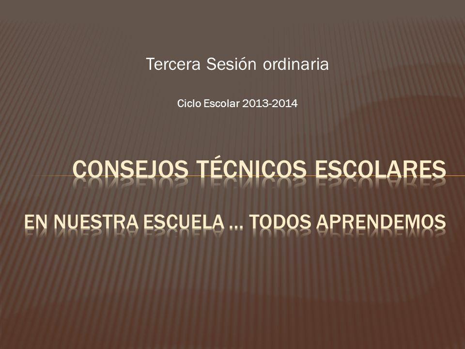 Tercera Sesión ordinaria Ciclo Escolar 2013-2014