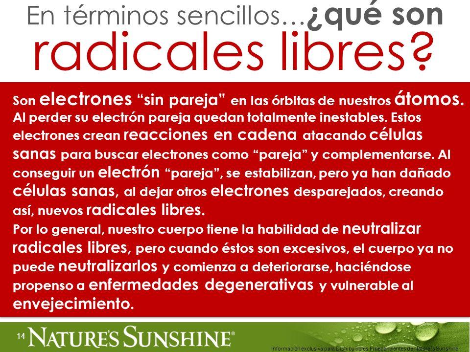 14 Información exclusiva para Distribuidores Independientes de Nature´s Sunshine.. Son electrones sin pareja en las órbitas de nuestros átomos. Al per