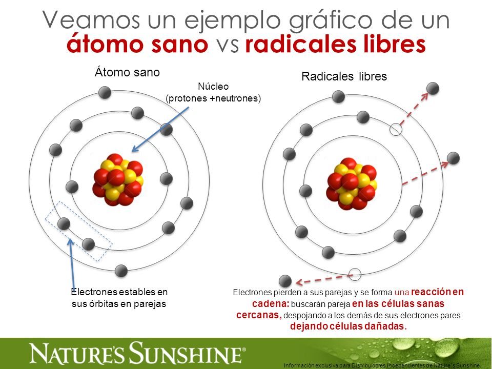 16 Información exclusiva para Distribuidores Independientes de Nature´s Sunshine.. Veamos un ejemplo gráfico de un átomo sano vs radicales libres Núcl