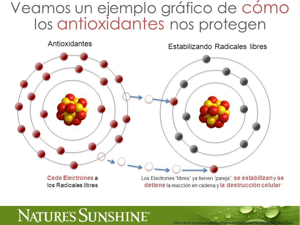 21 Información exclusiva para Distribuidores Independientes de Nature´s Sunshine.. Veamos un ejemplo gráfico de cómo los antioxidantes nos protegen Ce
