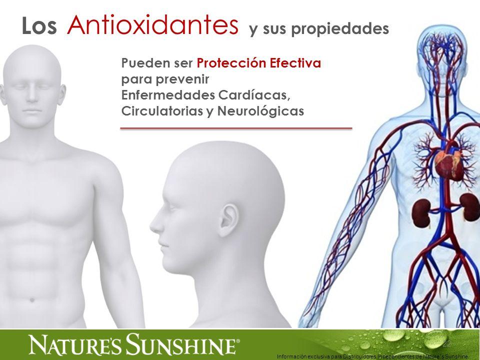 22 Información exclusiva para Distribuidores Independientes de Nature´s Sunshine.. Los Antioxidantes y sus propiedades Pueden ser Protección Efectiva