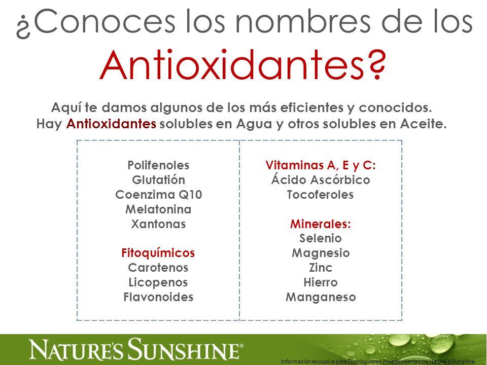 Polifenoles Glutatión Coenzima Q10 Melatonina Xantonas Fitoquímicos Carotenos Licopenos Flavonoides Vitaminas A, E y C: Ácido Ascórbico Tocoferoles Mi