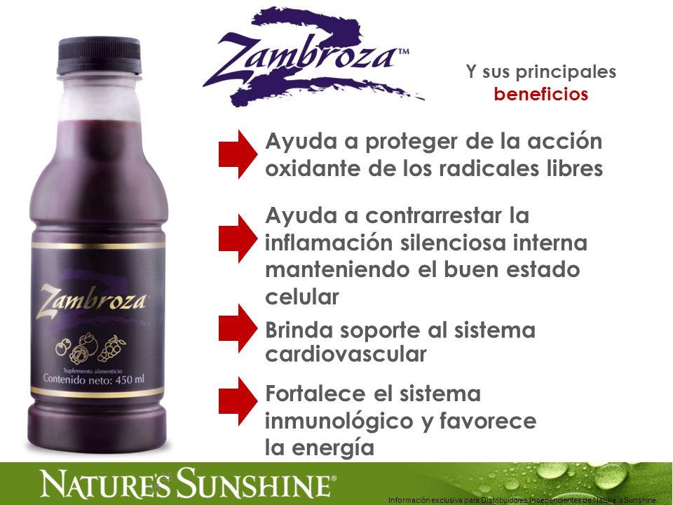 35 Información exclusiva para Distribuidores Independientes de Nature´s Sunshine.. Y sus principales beneficios 35 Ayuda a contrarrestar la inflamació