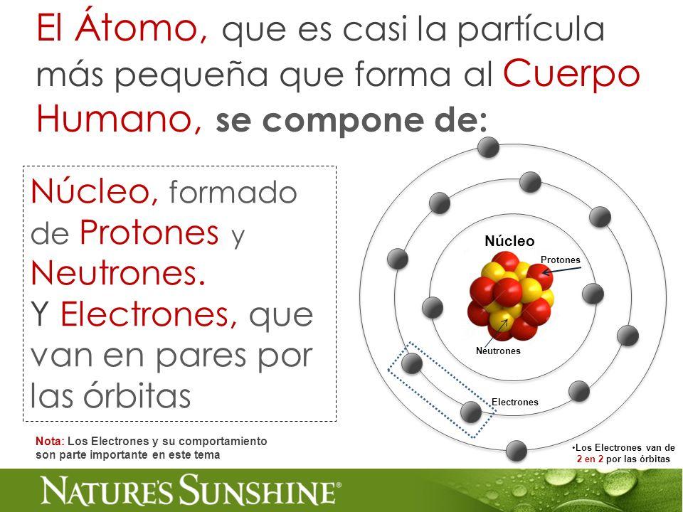 Núcleo, formado de Protones y Neutrones. Y Electrones, que van en pares por las órbitas El Átomo, que es casi la partícula más pequeña que forma al Cu