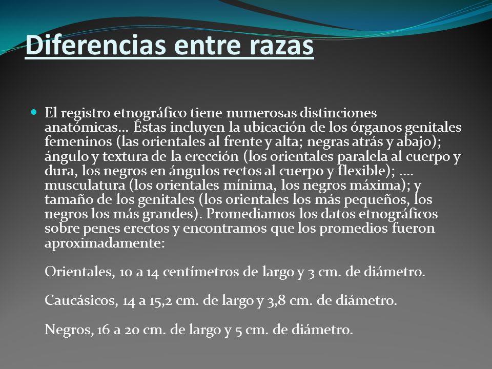 EXPERIENCIAS DE USUARIOS, OPINION DE EL PUBLICO EXPERIENCIAS DE USUARIOS, OPINION DE EL PUBLICO.