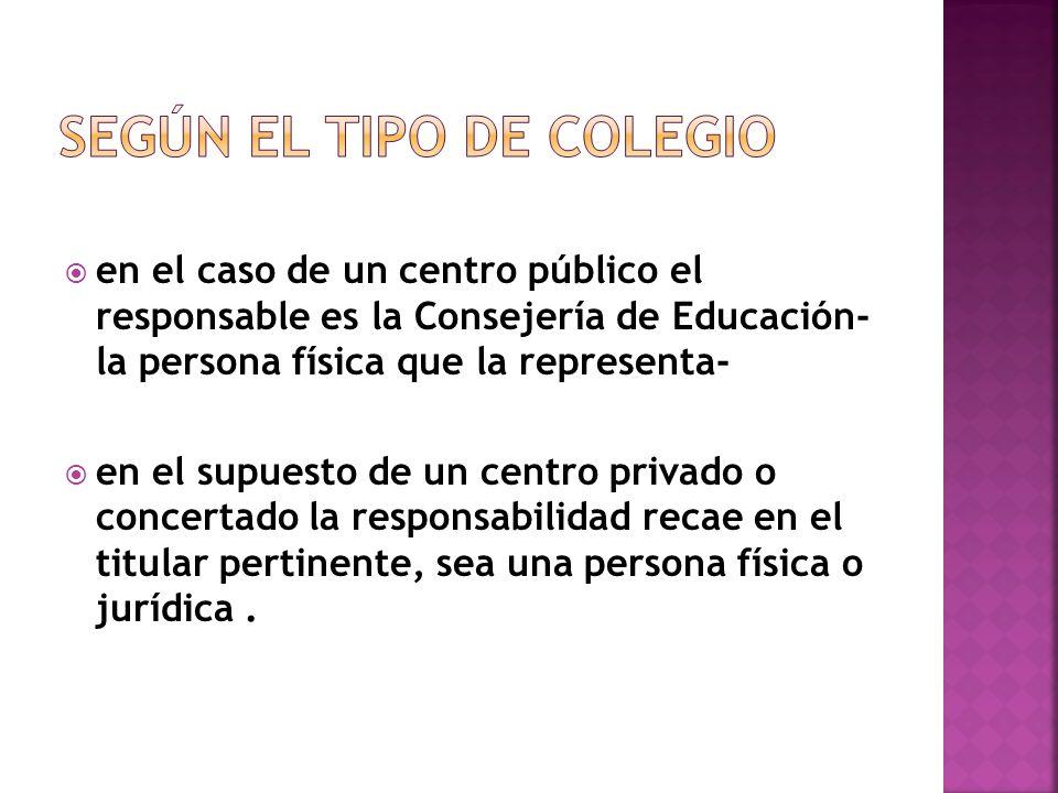 en el caso de un centro público el responsable es la Consejería de Educación- la persona física que la representa- en el supuesto de un centro privado