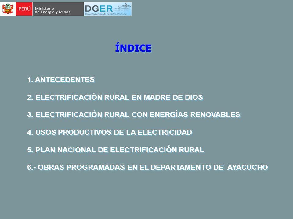 ÍNDICE 1. ANTECEDENTES 2. ELECTRIFICACIÓN RURAL EN MADRE DE DIOS 3. ELECTRIFICACIÓN RURAL CON ENERGÍAS RENOVABLES 4. USOS PRODUCTIVOS DE LA ELECTRICID