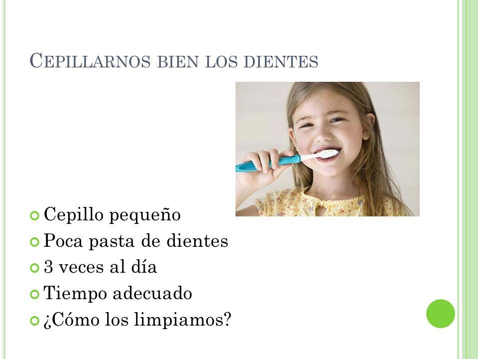 C EPILLARNOS BIEN LOS DIENTES Cepillo pequeño Poca pasta de dientes 3 veces al día Tiempo adecuado ¿Cómo los limpiamos