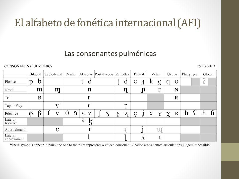 Una transcripción fonética También es un sistema para representar las palabras en un idioma, pero con el formato lo más regular posible. En la fonétic