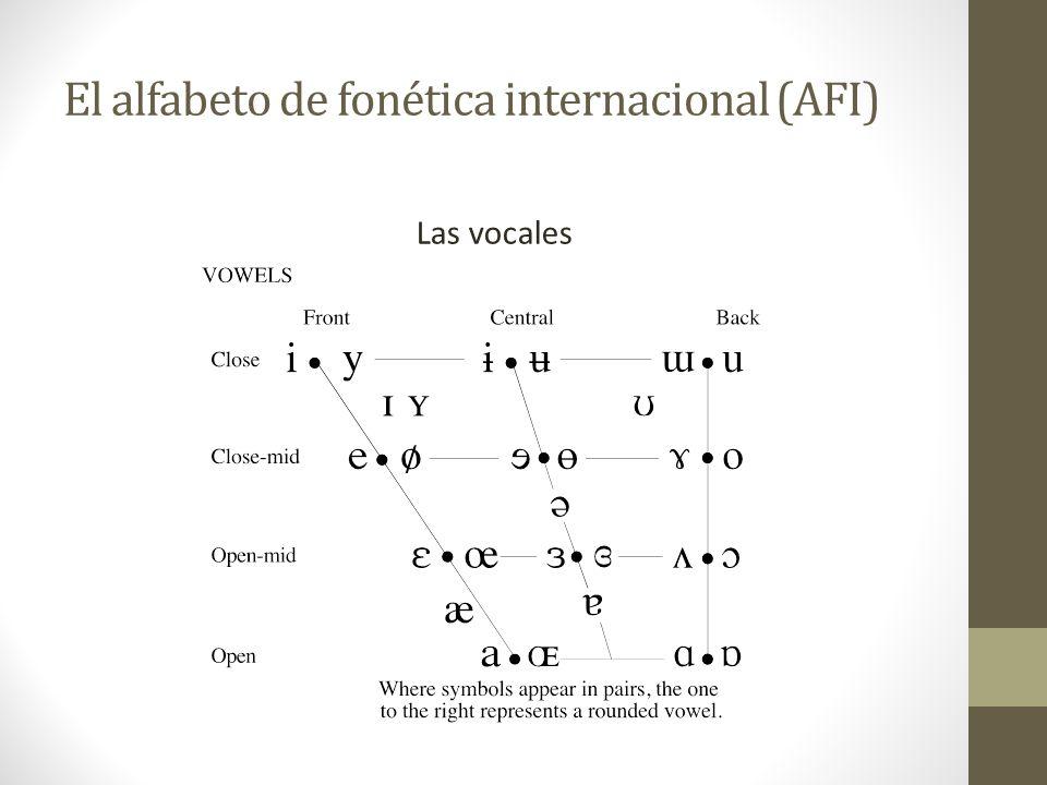 El alfabeto de fonética internacional (AFI) Las consonantes pulmónicas