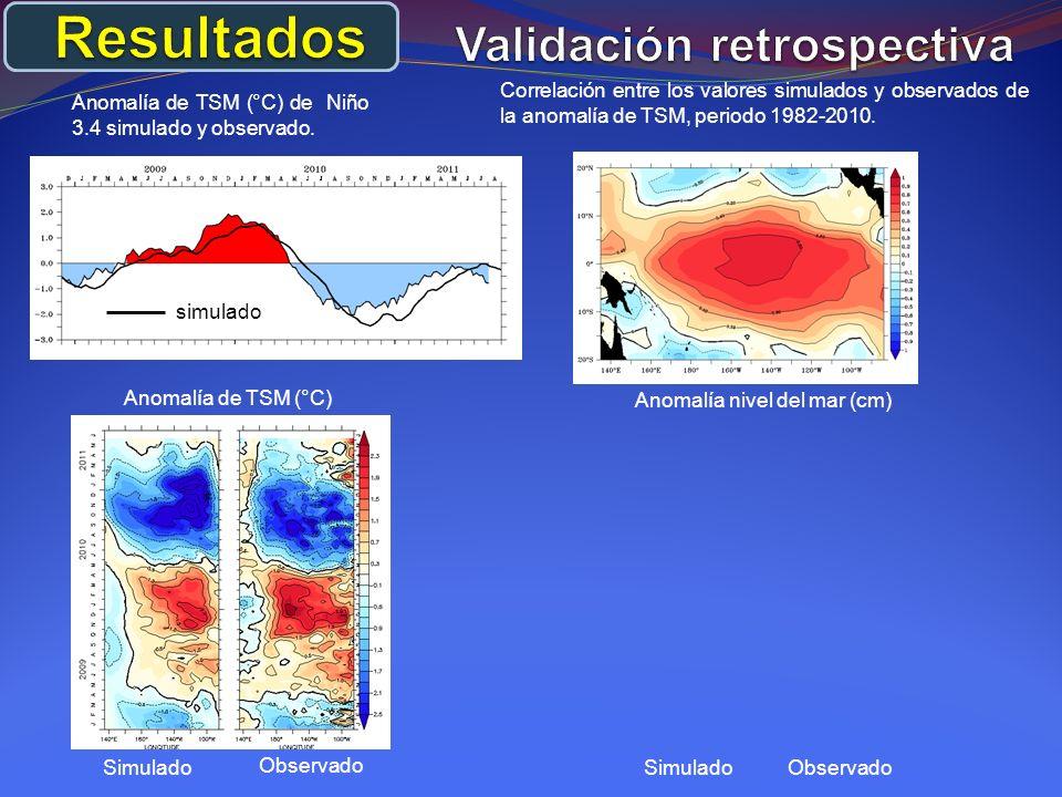 Anomalía de TSM (°C) de Niño 3.4 simulado y observado.