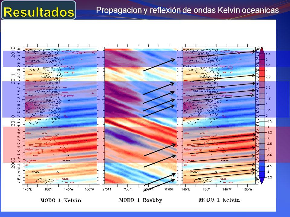 - El modelo LODCA simuló bien las anomalías de la temperatura superficial del mar en el Pacifico Central con una correlación de 0.8.