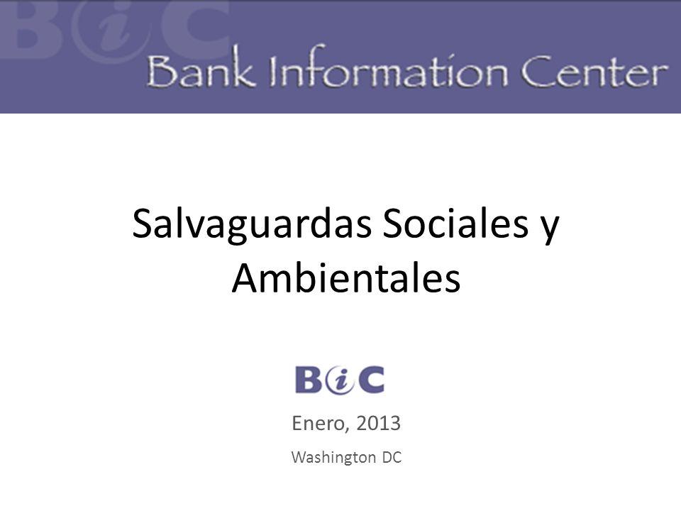 Salvaguardas Sociales y Ambientales BIC Enero, 2013 Washington DC