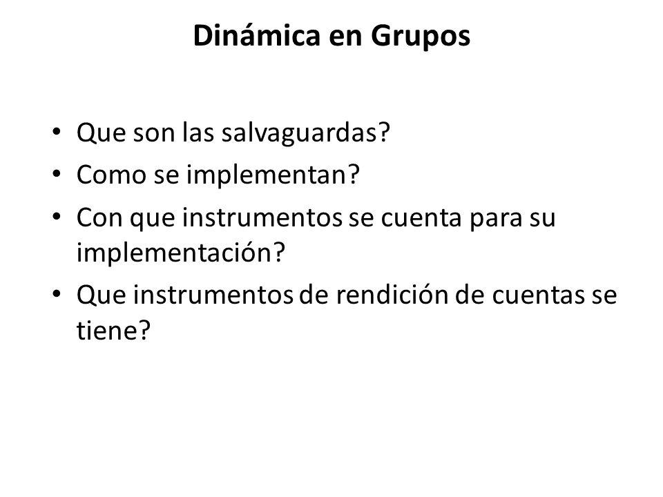 Dinámica en Grupos Que son las salvaguardas? Como se implementan? Con que instrumentos se cuenta para su implementación? Que instrumentos de rendición