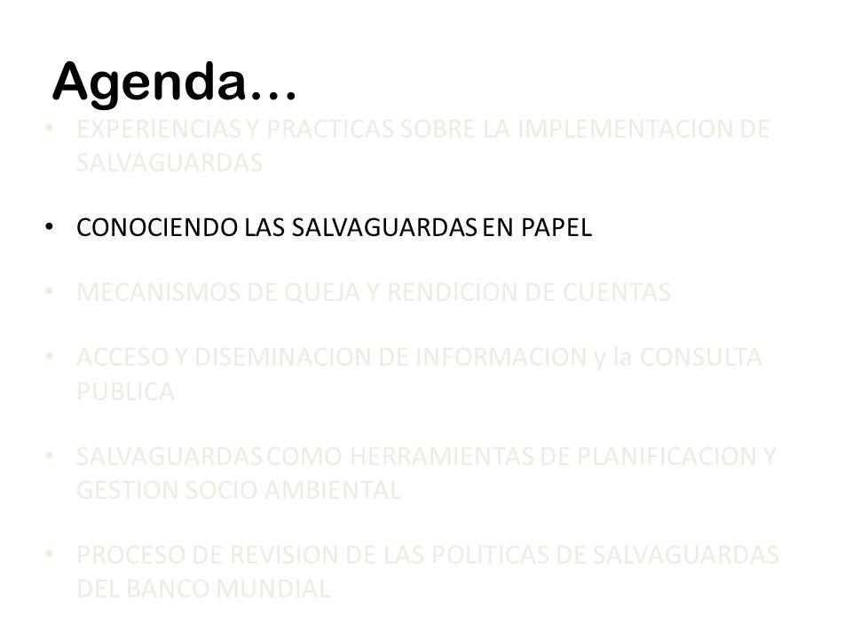 Agenda… EXPERIENCIAS Y PRACTICAS SOBRE LA IMPLEMENTACION DE SALVAGUARDAS CONOCIENDO LAS SALVAGUARDAS EN PAPEL MECANISMOS DE QUEJA Y RENDICION DE CUENT