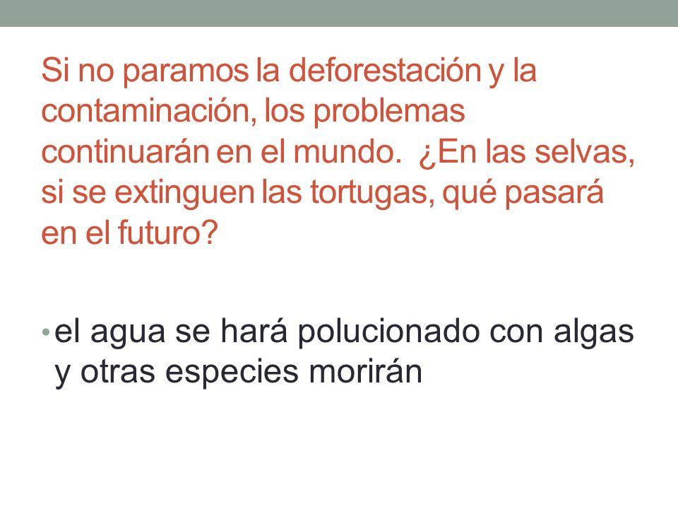 Si no paramos la deforestación y la contaminación, los problemas continuarán en el mundo.