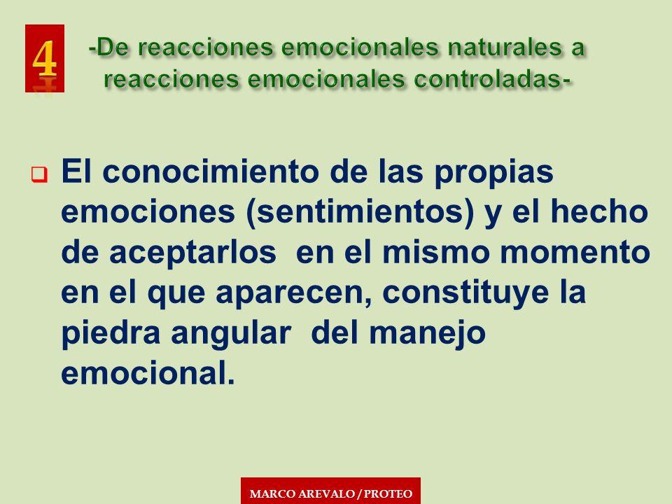 MARCO AREVALO / PROTEO El conocimiento de las propias emociones (sentimientos) y el hecho de aceptarlos en el mismo momento en el que aparecen, consti