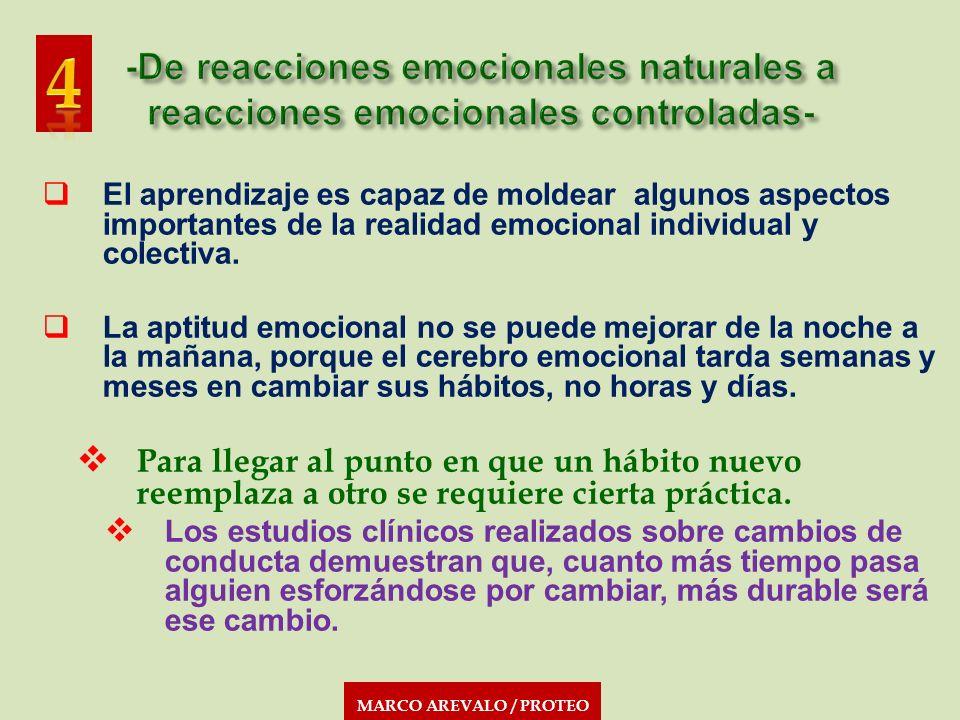 MARCO AREVALO / PROTEO El aprendizaje es capaz de moldear algunos aspectos importantes de la realidad emocional individual y colectiva. La aptitud emo