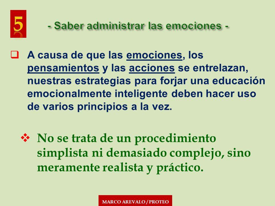 MARCO AREVALO / PROTEO A causa de que las emociones, los pensamientos y las acciones se entrelazan, nuestras estrategias para forjar una educación emo