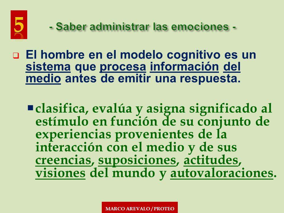 MARCO AREVALO / PROTEO El hombre en el modelo cognitivo es un sistema que procesa información del medio antes de emitir una respuesta. clasifica, eval