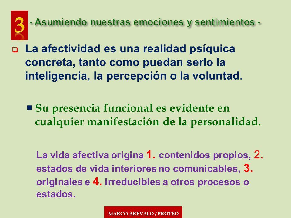MARCO AREVALO / PROTEO La afectividad es una realidad psíquica concreta, tanto como puedan serlo la inteligencia, la percepción o la voluntad. Su pres