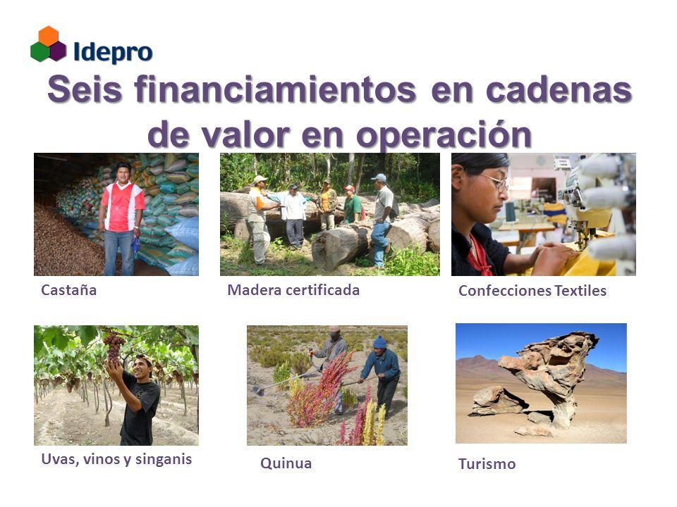 Seis financiamientos en cadenas de valor en operación CastañaMadera certificada Confecciones Textiles Uvas, vinos y singanis Turismo Quinua