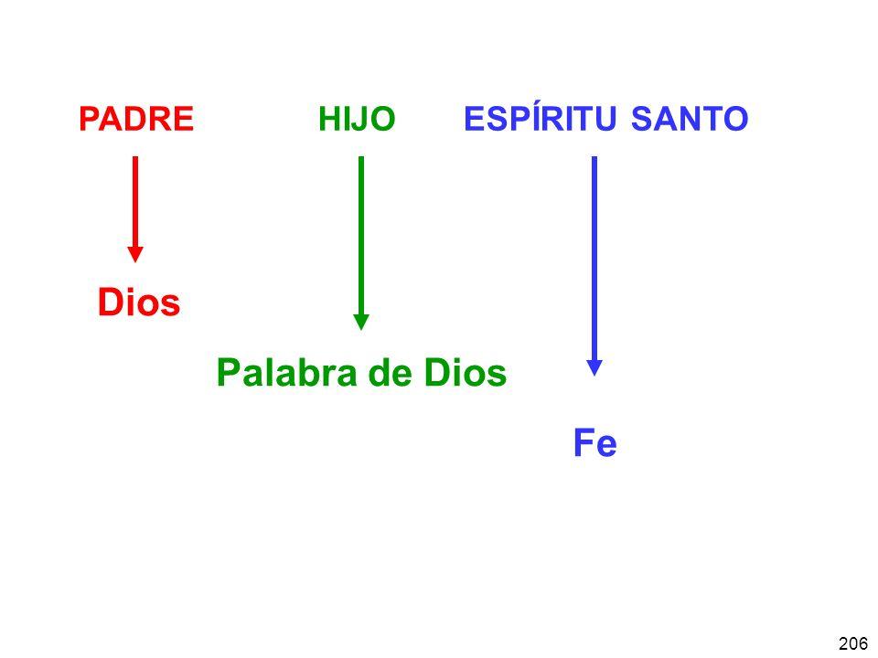 206 PADRE HIJO ESPÍRITU SANTO Dios Palabra de Dios Fe