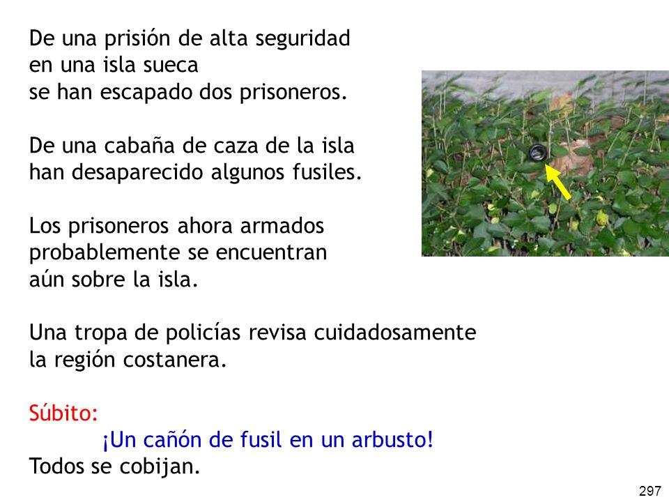 297 De una prisión de alta seguridad en una isla sueca se han escapado dos prisoneros. De una cabaña de caza de la isla han desaparecido algunos fusil