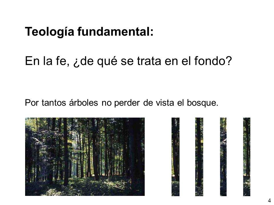 4 Teología fundamental: En la fe, ¿de qué se trata en el fondo? Por tantos árboles no perder de vista el bosque.