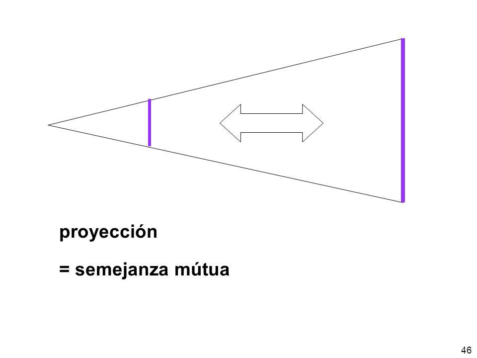 46 proyección = semejanza mútua