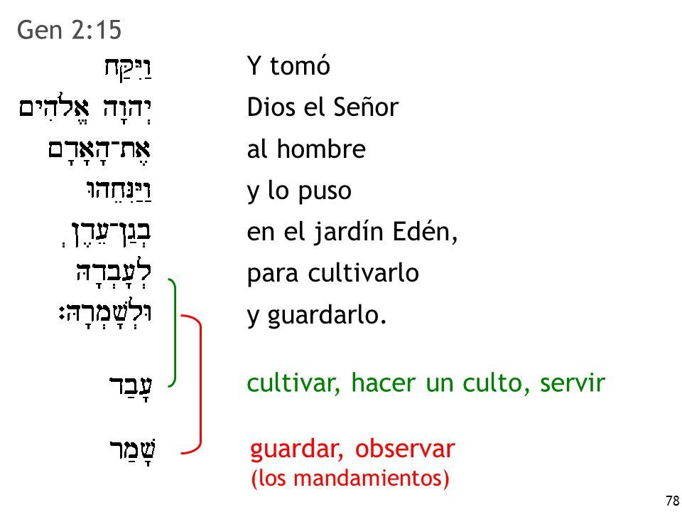 78 Y tomó Dios el Señor al hombre y lo puso en el jardín Edén, para cultivarlo y guardarlo. cultivar, hacer un culto, servir Gen 2:15 guardar, observa
