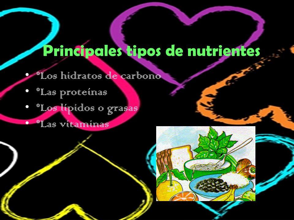 Principales tipos de nutrientes *Los hidratos de carbono *Las proteínas *Los lípidos o grasas *Las vitaminas