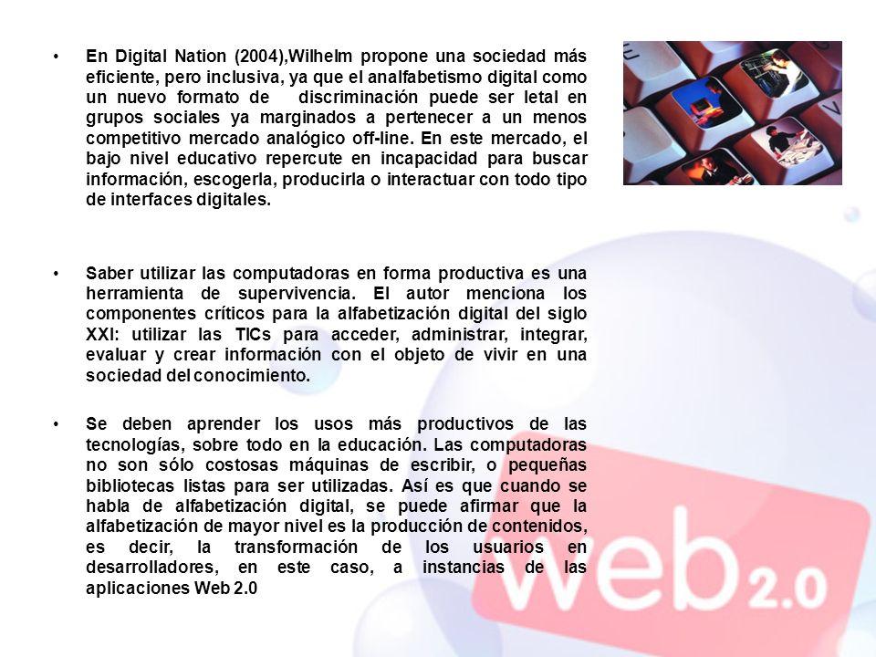 En Digital Nation (2004),Wilhelm propone una sociedad más eficiente, pero inclusiva, ya que el analfabetismo digital como un nuevo formato de discrimi
