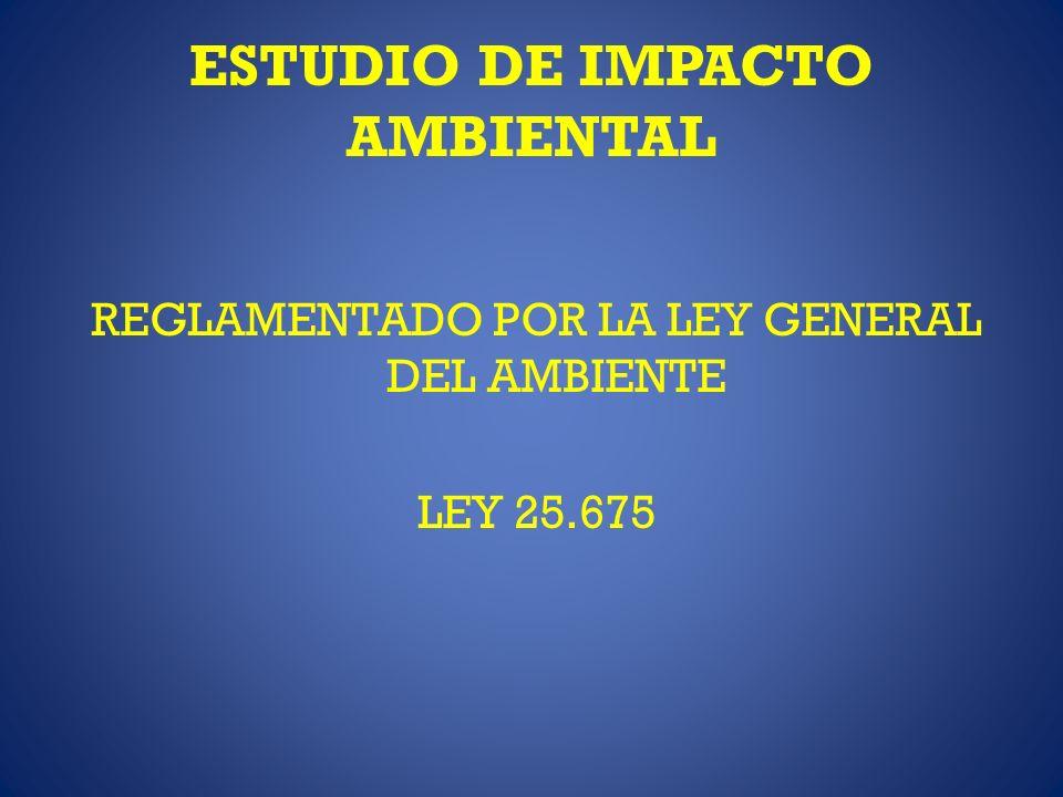 ESTUDIO DE IMPACTO AMBIENTAL REGLAMENTADO POR LA LEY GENERAL DEL AMBIENTE LEY 25.675