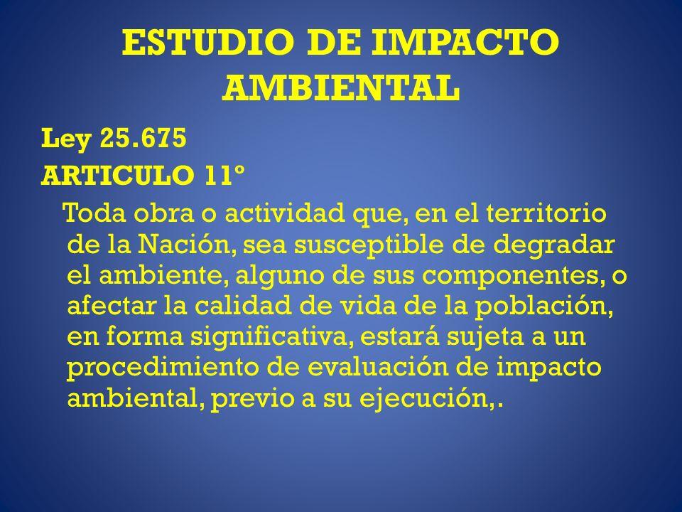 ESTUDIO DE IMPACTO AMBIENTAL Ley 25.675 ARTICULO 11º Toda obra o actividad que, en el territorio de la Nación, sea susceptible de degradar el ambiente