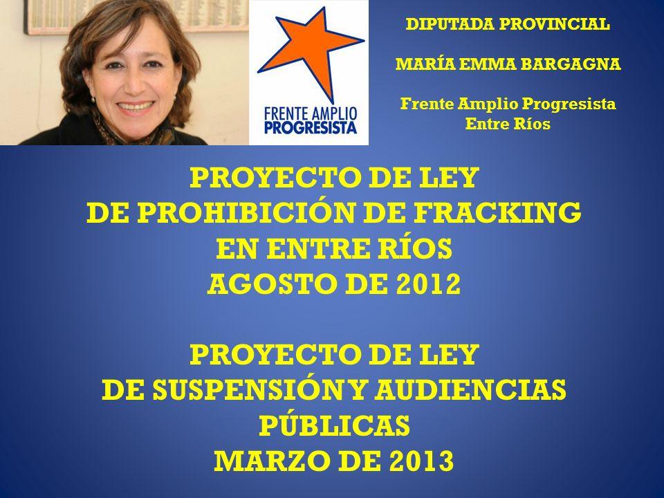 DIPUTADA PROVINCIAL MARÍA EMMA BARGAGNA Frente Amplio Progresista Entre Ríos PROYECTO DE LEY DE PROHIBICIÓN DE FRACKING EN ENTRE RÍOS AGOSTO DE 2012 PROYECTO DE LEY DE SUSPENSIÓN Y AUDIENCIAS PÚBLICAS MARZO DE 2013