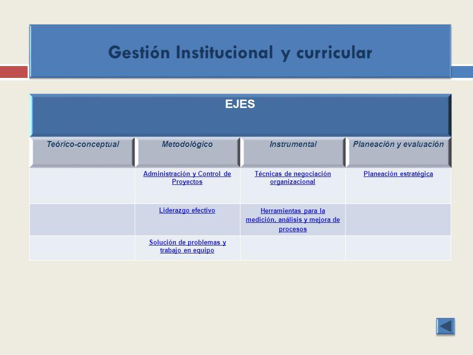 EJES Teórico-conceptualMetodológicoInstrumentalPlaneación y evaluación Administración y Control de Proyectos Técnicas de negociación organizacional Pl