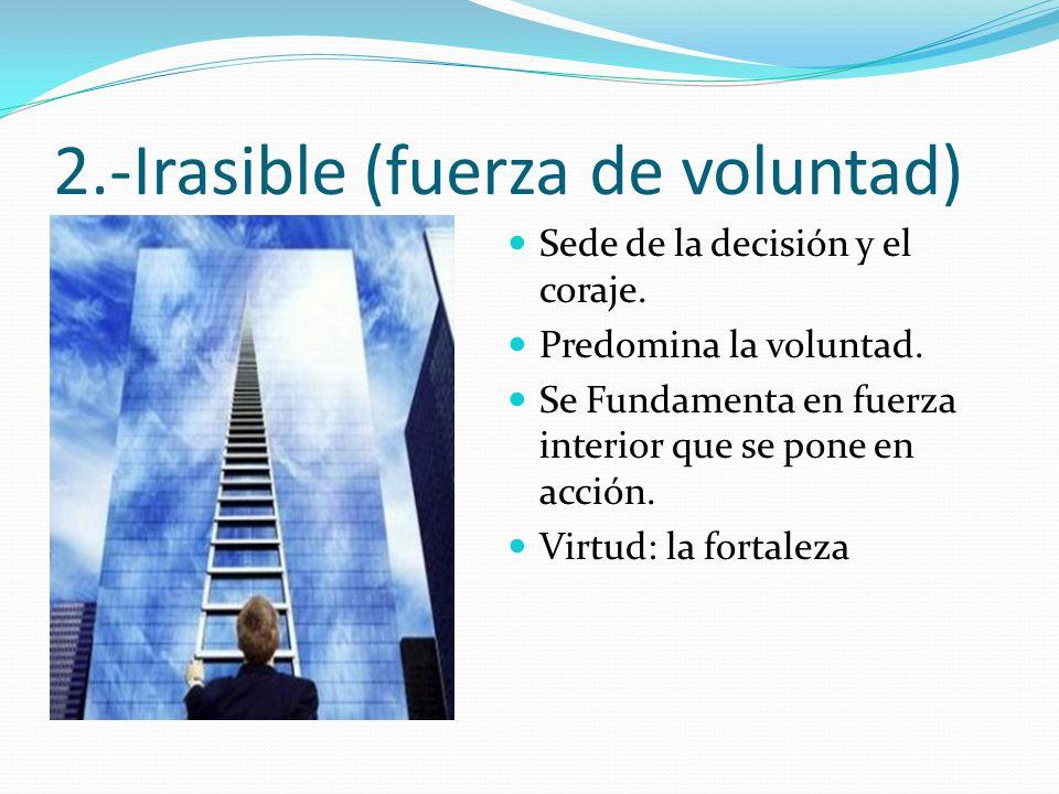 2.-Irasible (fuerza de voluntad) Sede de la decisión y el coraje. Predomina la voluntad. Se Fundamenta en fuerza interior que se pone en acción. Virtu
