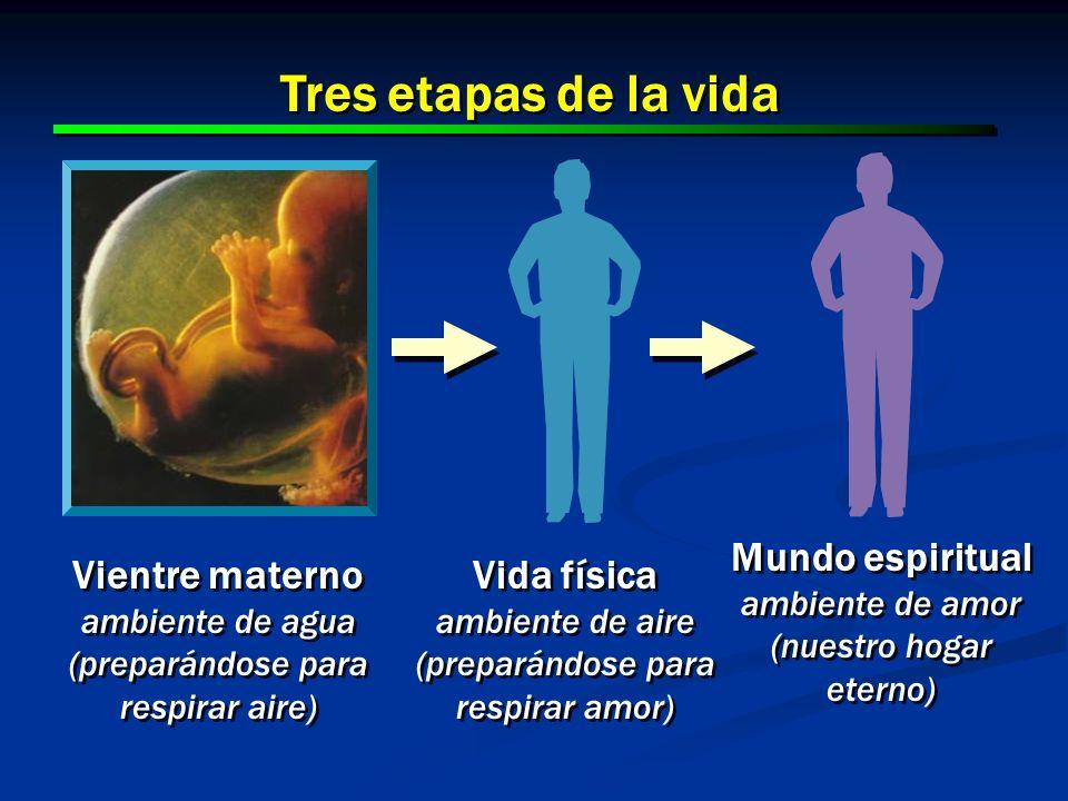 25 Vientre materno ambiente de agua (preparándose para respirar aire) Vientre materno ambiente de agua (preparándose para respirar aire) Vida física a