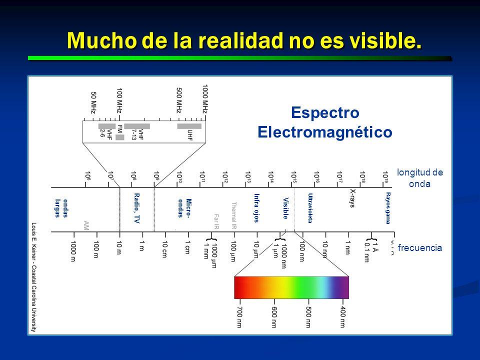 9 9 Mucho de la realidad no es visible. ondas largas Micro- ondas Radio, TV Infra ojos Visible Ultravioleta Rayos gama Espectro Electromagnético longi