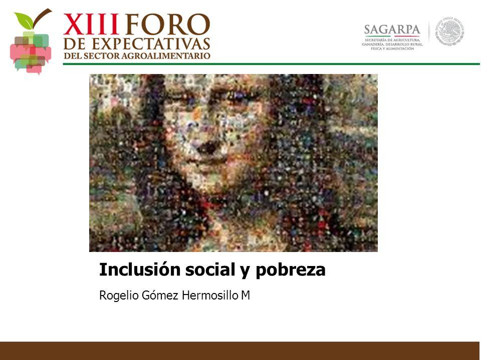 Inclusión social y pobreza Rogelio Gómez Hermosillo M