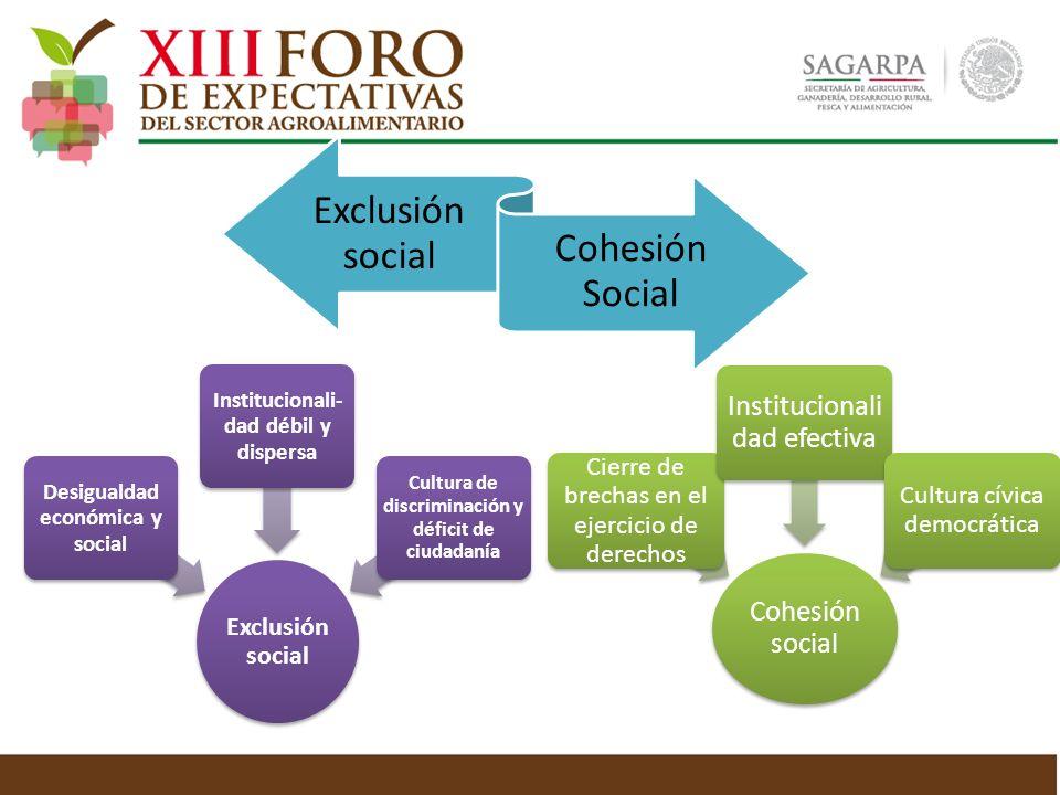 Exclusión social Desigualdad económica y social Institucionali- dad débil y dispersa Cultura de discriminación y déficit de ciudadanía Cohesión social