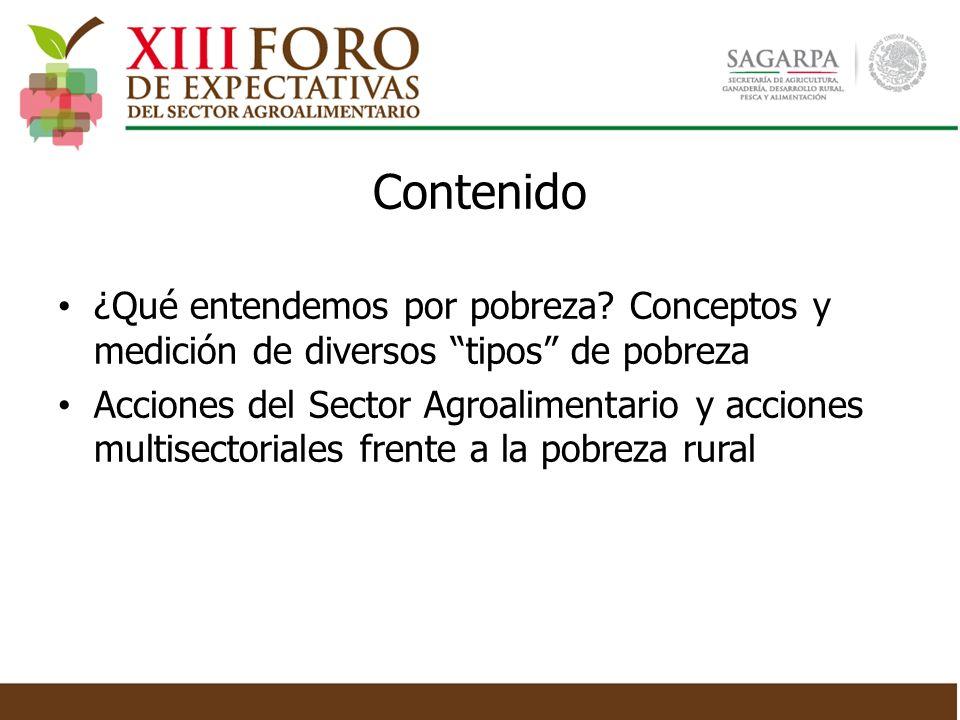 ¿Qué entendemos por pobreza? Conceptos y medición de diversos tipos de pobreza Acciones del Sector Agroalimentario y acciones multisectoriales frente