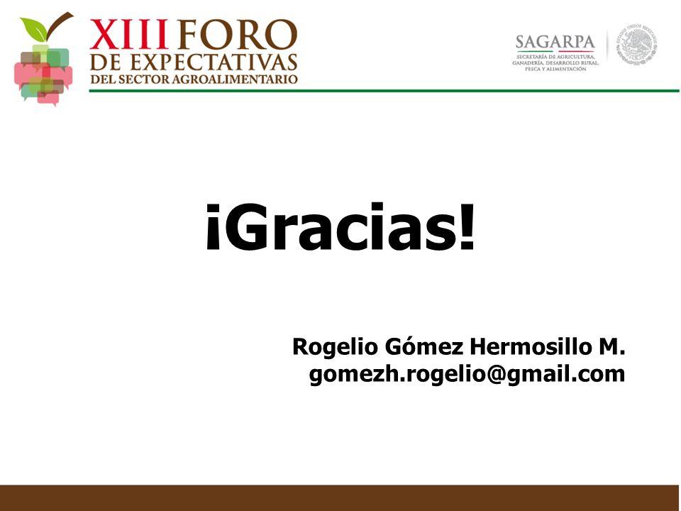 Rogelio Gómez Hermosillo M. gomezh.rogelio@gmail.com ¡Gracias!